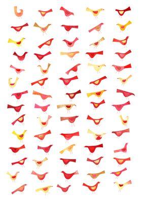 Undisciplined Birds
