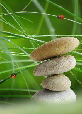 Balance Stone CB
