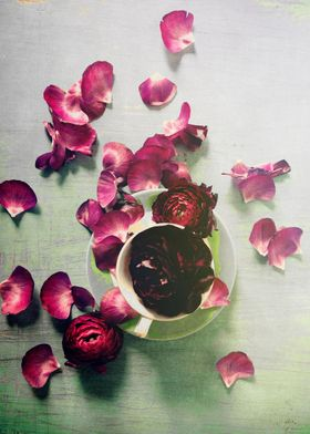 Purple ranunculus petals are scattered across a lovely  ...