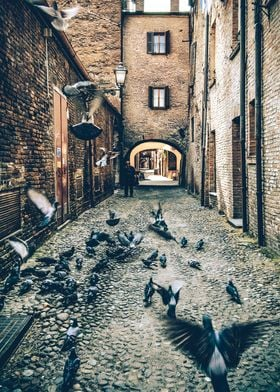 A morning in the ancient street of Ferrara, Italy.