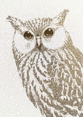 The Intellectual Owl - typography art