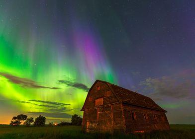 Aurora borealis over abandoned barn in mosquito infeste ...