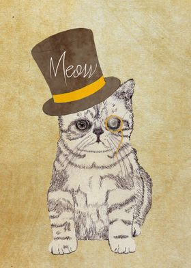 Funny Cat with a Hat.  funny and cute original drawing ...