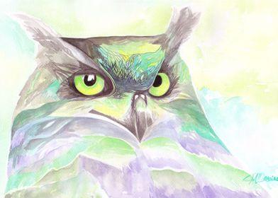 Luminous Owl