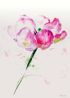 Watercolor expression, tulip illustration in pink, ivor ...
