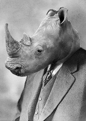 Albert Rhino