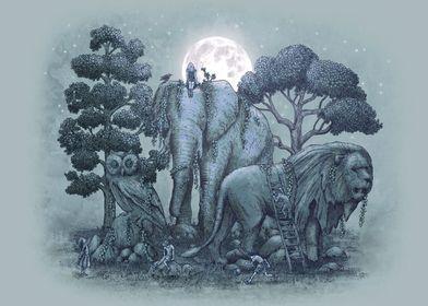 Midnight in the Stone Garden