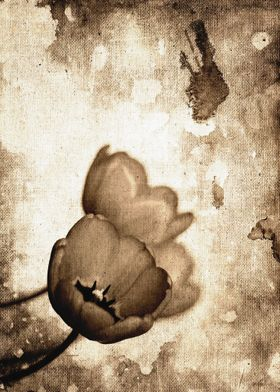 Vintage Flowers Sepia - Photo edition from colors to bl ...