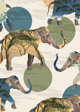 Elephant Polka