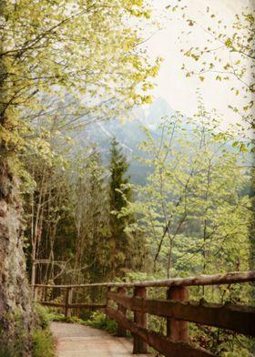 Boardwalk Through Mountains - Werfen, Austria