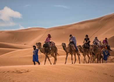 Camel Riders of Sahara Desert