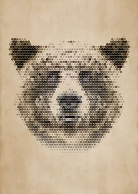Geometric Bear Portrait