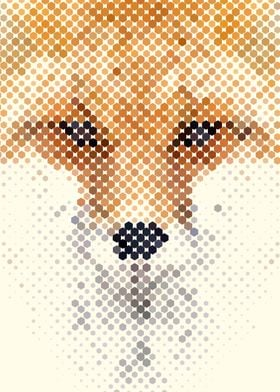 Abstract Fox Portrait