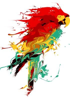 Splash The Parrot