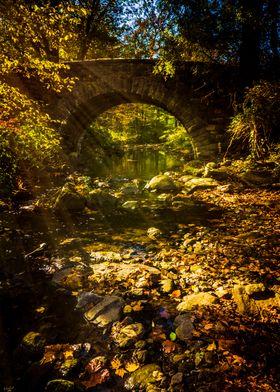 Shady Stream Bridge