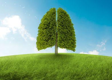 Breath of nature