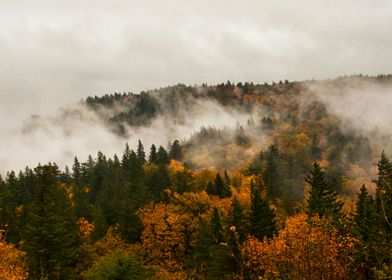 Autumn in the Columbia River Gorge