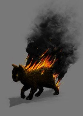 Cat On Fire!