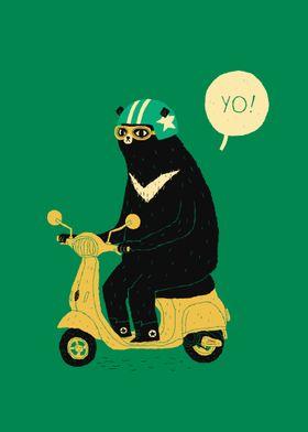scooter bear