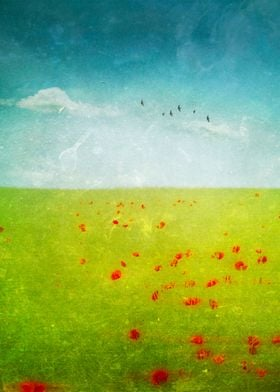 Abstract landscape with poppies - texturized photograph ...