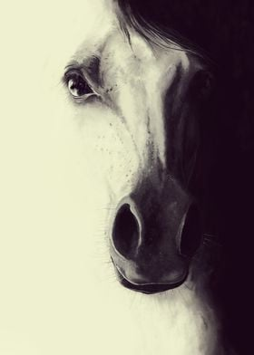 Come to me my dream - Digital horse illustration
