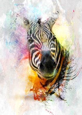 Zebra Splashed in Water Color