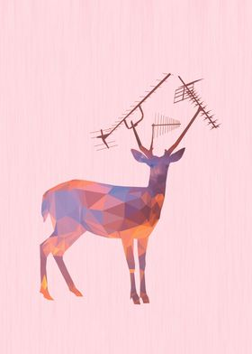 Urban Deer - Sunset