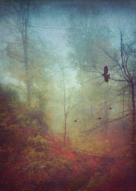 Misty November morning