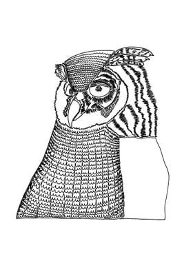 """Owl. Drawn with one line. """"Owls never remember who you ..."""