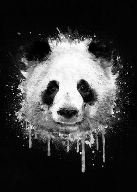 Cool Abstract Graffiti Watercolor Panda Portrait in Bla ...
