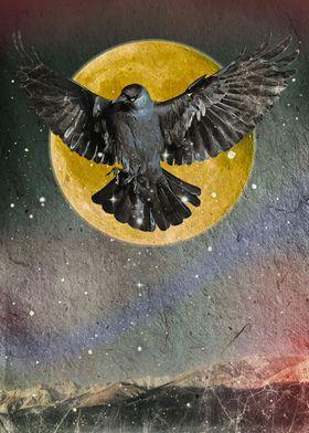 Collage Origin of the Night