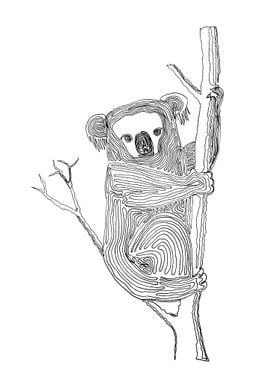 Koala - Drawing with One Line Line begins at the top of ...