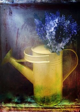One Yellow watering can with violet flowers