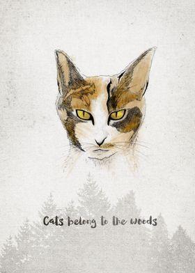 Cats belong to the woods . Spirits
