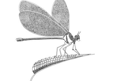 Dragonfly drawn with one line. Line begins in the eye a ...