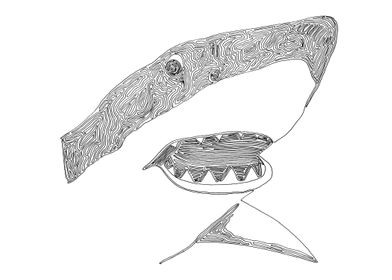 Shark drawn with one line. The line begins at the left  ...
