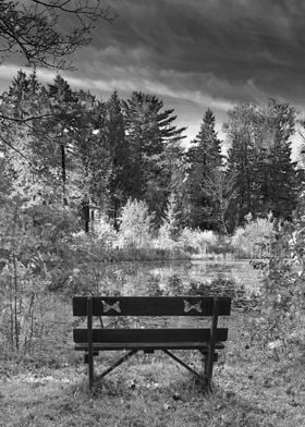 Bench Overlooking Pond and Trees - Landscape in Infrare ...