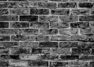 Contrasting Wall
