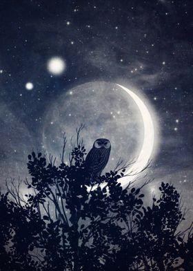 A Night with Venus and Jupiter