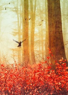 Serene forest scenery in fall with birds