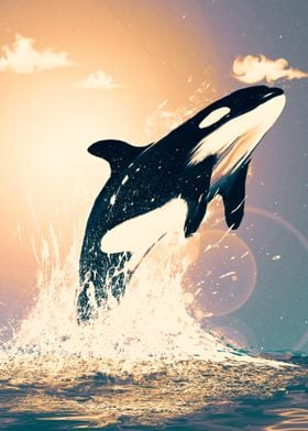 orca's can fly II