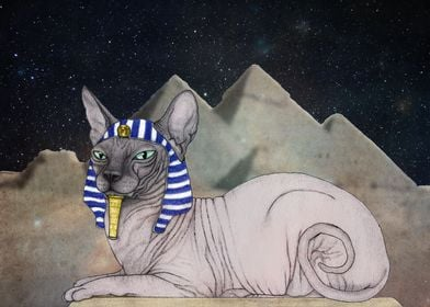 Sphynx Cat (space background)