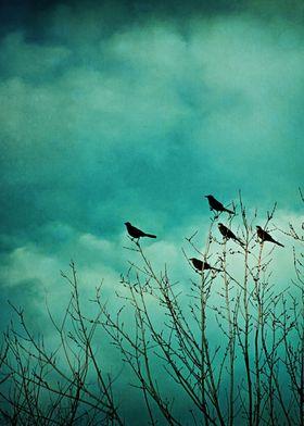 Like Birds on Trees