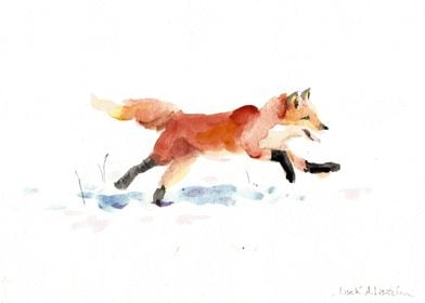 Young fox on the snow. Watercolour painting on paper.