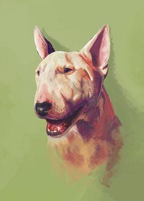 Render the bull terrier