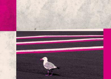Seagull - Mixed Media