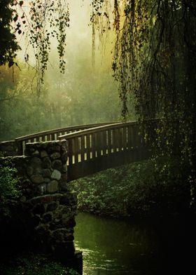 Wooden bridge in an old park