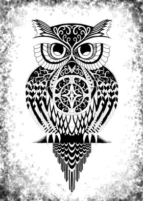 An Owl in Black