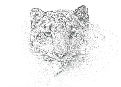 From the blizzard... A snow leopard dotwork portrait