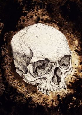 Pointilism skull with a black ink wash background